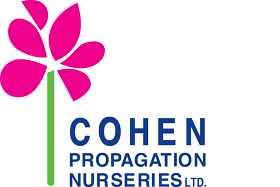 Cohen propagation nurseries ltd